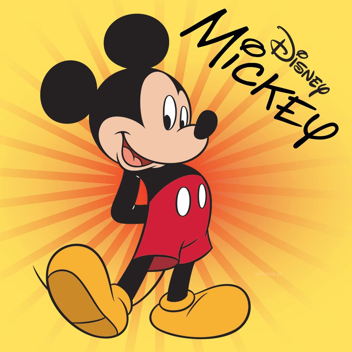 Παιδικό Πετσετάκι Viopros Mickey 5