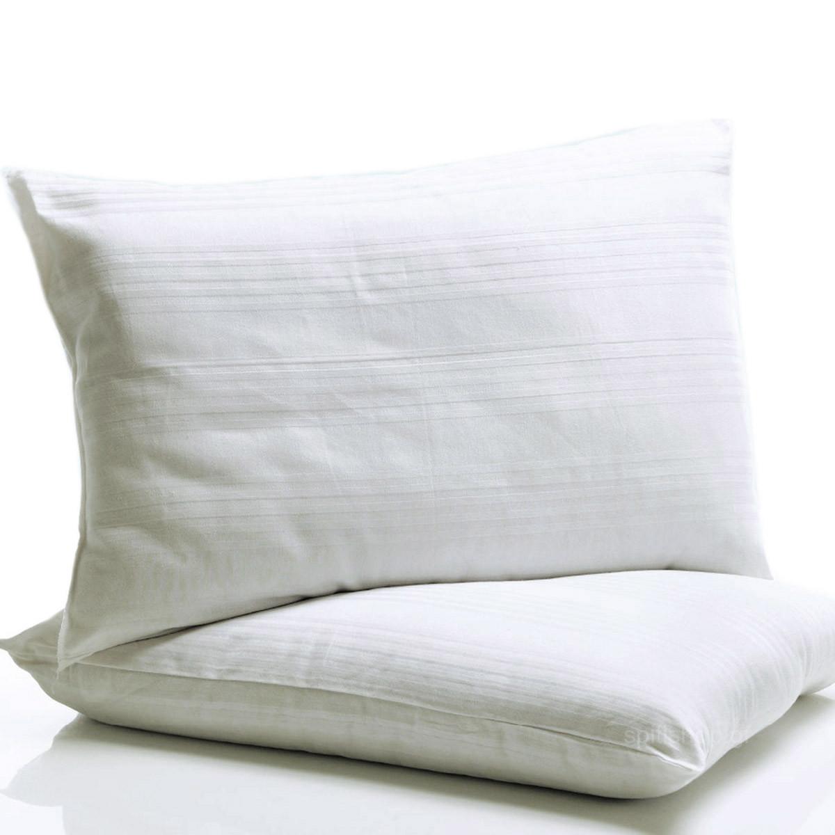 Μαξιλάρι Ύπνου (50×80) Αντιαλλεργικό Palamaiki Cottonelo