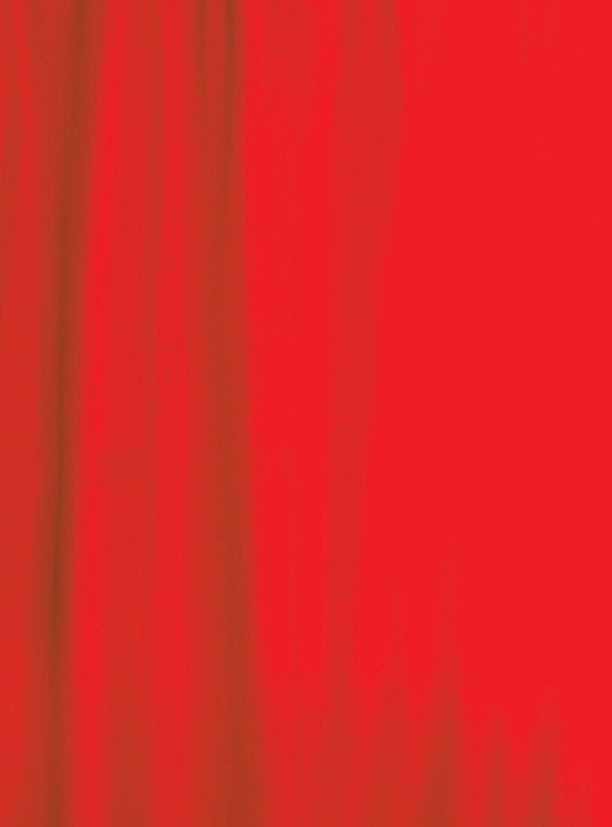 Κουρτίνα Μπάνιου (180x200) Rainbow Colour 02480 Κόκκινο
